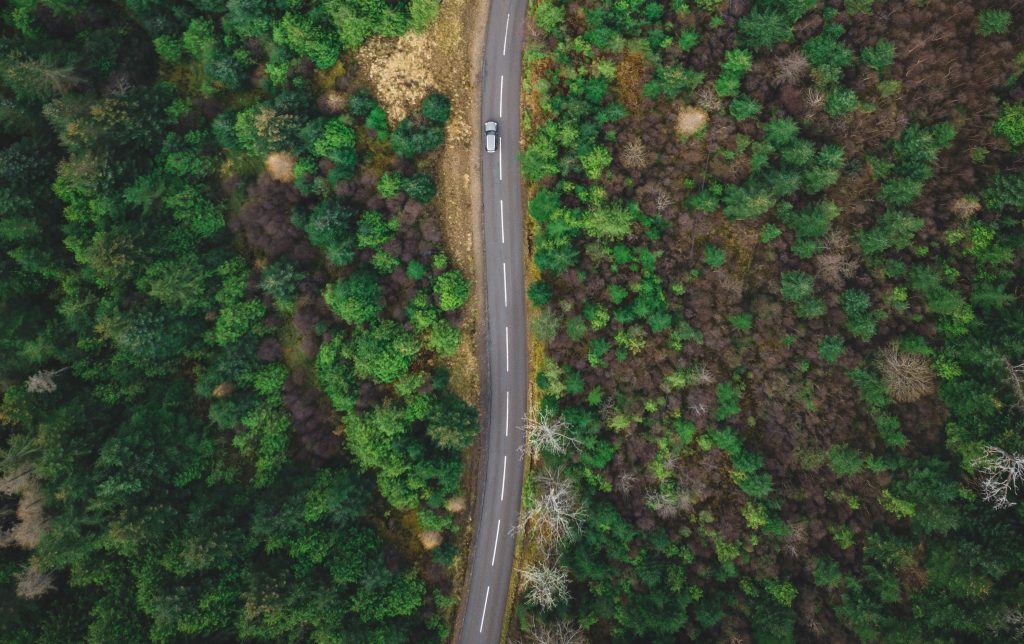 EcoTrack car in nature
